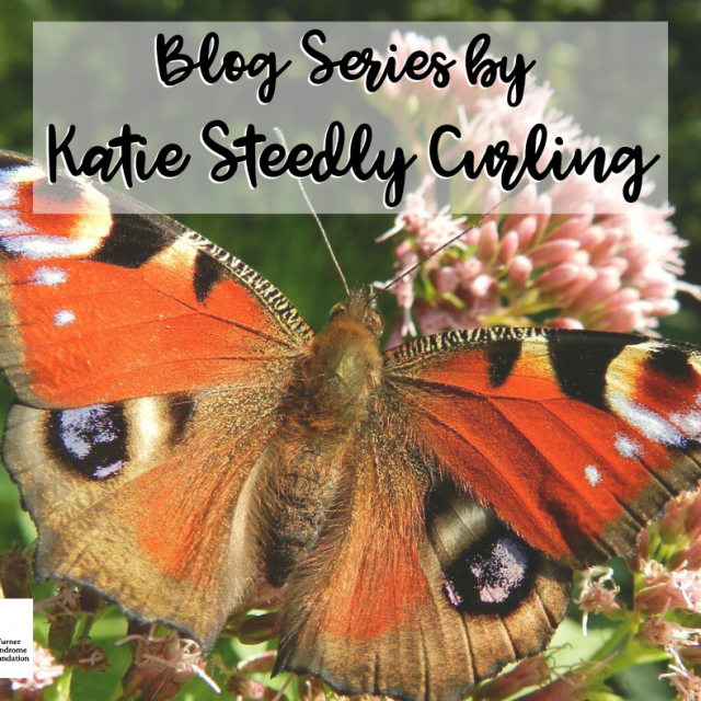 blog series with Katie Steedly curling